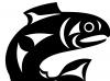 salmon-stthaqwi-basic