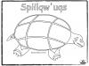 turtle-sqiilqwuqs-outline