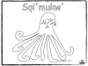 octopus-sqimukw-basic-outline