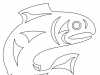 salmon-stthaqwi-basic-outline