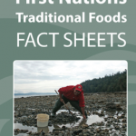 Traditional Foods Facts Sheet